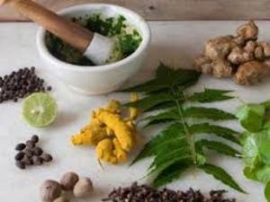 Punarnava Ayurveda to cash in on rise in Russian medical tourists to Kerala (c) ET Healthworld