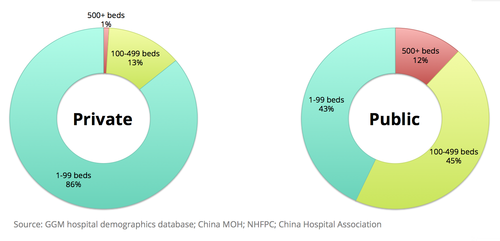 China hospitals by ownership and bed size (c) Global Growth Markets